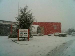 Snowing in Melwood