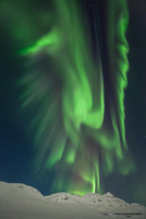 Liverbird, northern lights