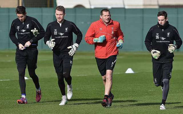 Five better keepers than Adam Bogdan that we should have signed