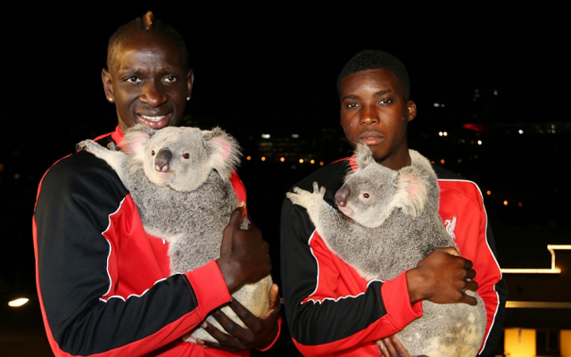 (Images) Liverpool duo cuddle Koalas as the Reds settle in Down Under