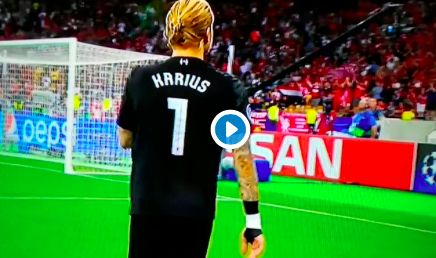 (Video) Crushed Loris Karius apologises to Liverpool fans at full-time
