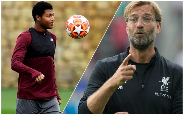 Klopp's latest comments on Brewster should get Reds fans excited