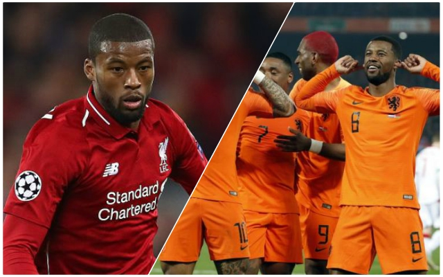 Let the Gini out the bottle? Fans react to Wijnaldum goal for Netherlands