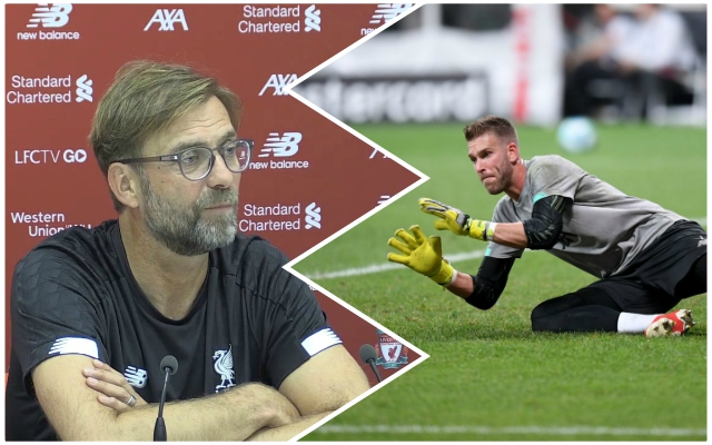 Better than De Gea: Stat shows goalkeeper Adrian has made a fine start to life with the Reds