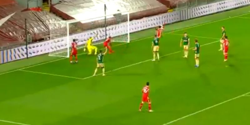 (Video) Bobby Firmino's funny little dive into the net after scoring at Anfield